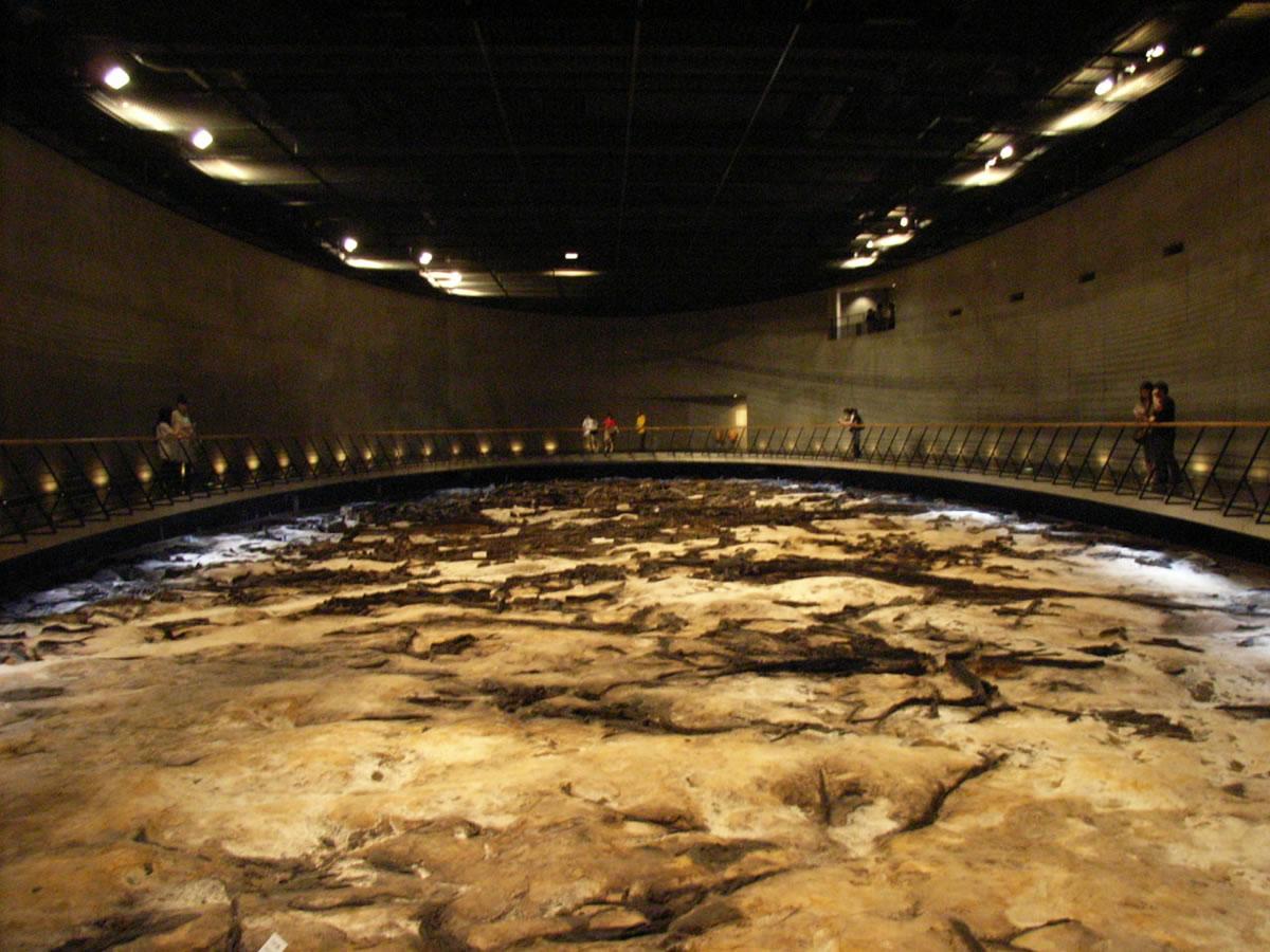 仙台市にある「地底の森ミュージアム」に行ってきました