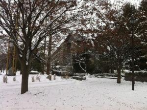 雪の山形美術館:山形美術館で「鬼海弘雄写真展 PERSONA」を観る