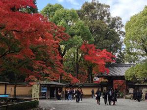 金閣寺への入り口:金閣寺 - そうだ、京都に行ってきた