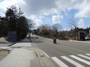 博物館の前の通り:仙台市博物館で『若冲がきてくれました-プライスコレクション・江戸絵画の美と生命-』展を観る。