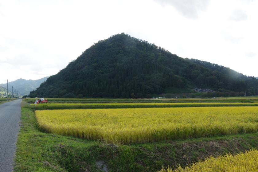 これから登る富神山