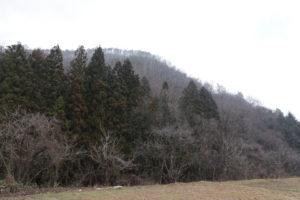 南から見た富神山:富神山を登る - 2016年1月3日