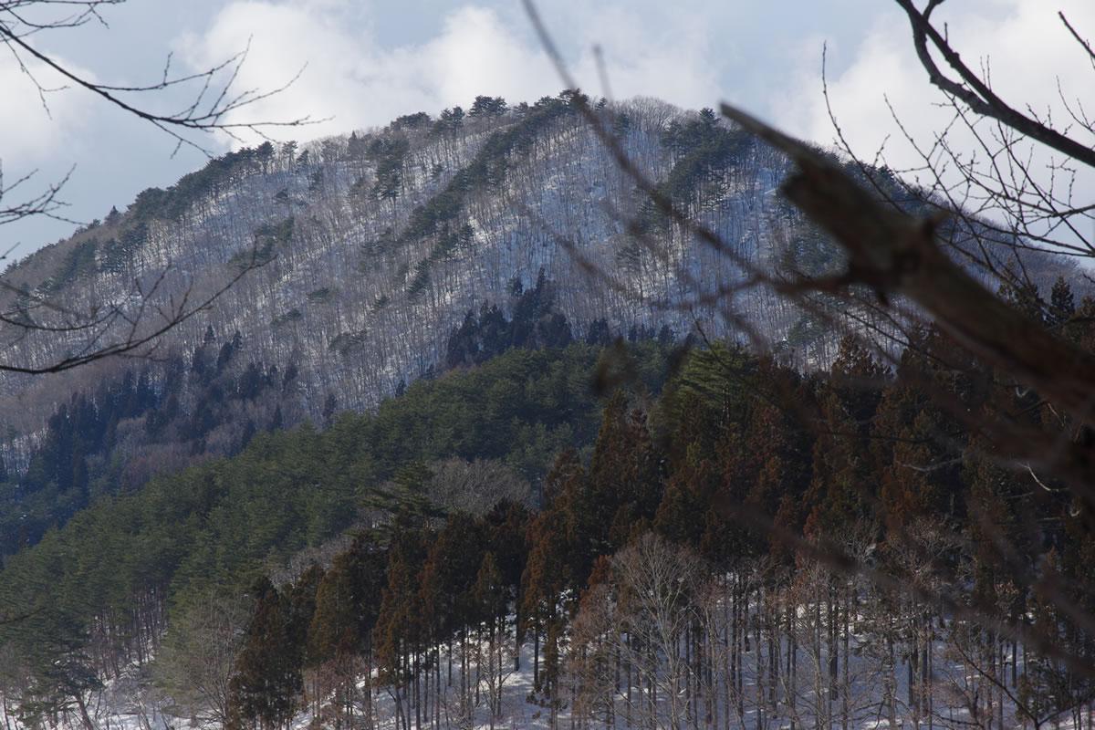 これが東黒森山