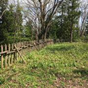 曲輪には柵も再現:山形市の長谷堂城跡公園を歩く - 2018年4月