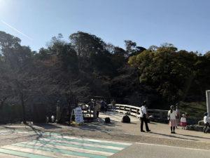表門橋(ここから入る):彦根城で「ひこにゃん」と会う